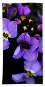Purple Arctic Wild Flowers Beach Towel