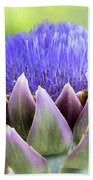 Purple Artichoke Flower  Beach Towel
