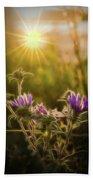 Purple Aster Glow Beach Towel by Beth Sawickie