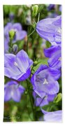 Purple Bell Flowers Beach Towel