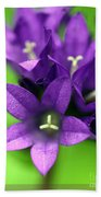Purple Blooms Beach Towel