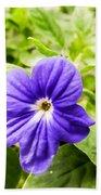 Purple Browallia Flower Beach Towel