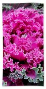 Purple Cabbage Beach Towel