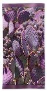 Purple Cactus Canvas Beach Towel