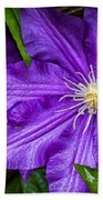 Purple Clematis Beach Towel
