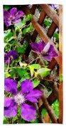 Purple Clematis On Trellis Beach Towel