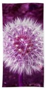 Purple Dandy Beach Towel