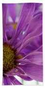 Purple Delight Beach Towel