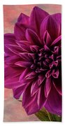 Purple Dhalia Beach Towel