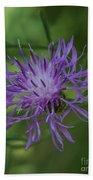 Purple Flower 8 Beach Towel