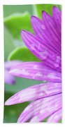 Purple Flower Closeup Beach Towel