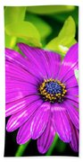 Purple Flower Beach Towel