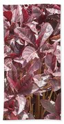 Purple Foliage Beach Towel