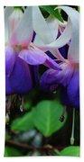 Purple Fuschia Beach Towel