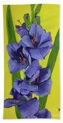 Purple Gladiolas Beach Towel