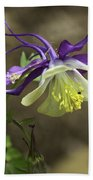 Purple Harlequin Columbine Beach Towel