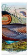 Purple Heron Antique Bird Print John Gould The Birds Of Great Britain Beach Towel