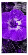 Purple Hibiscus Beach Towel