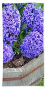 Purple Hyacinth Flowers Planter Beach Towel