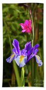 Purple Iris And Gladioli Byzantinus Beach Towel
