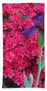Purple Iris In Pink 2  Beach Towel