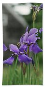 Purple Irises Beach Towel