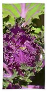 Purple Kale Beach Towel