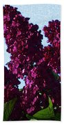 Purple Lilac 3 Beach Towel