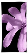 Purple Magnolia Beach Towel