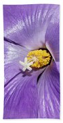 Purple Mallow Mist Beach Towel