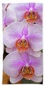 Purple Orchid 1 Beach Towel