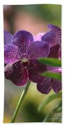 Purple Orchid Beauty Beach Towel