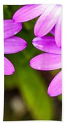 Purple Petals Beach Towel