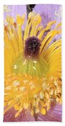 Purple Pasque Flower With Pollen Beach Towel
