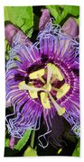 Purple Passion Flower Beach Towel