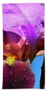 Purple Petals Four  Beach Towel