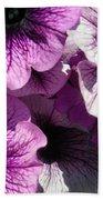 Purple Petunia Paradise Beach Towel