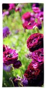 Purple Poppies Beach Towel