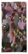 Purple Prickly Pear 2 Beach Sheet
