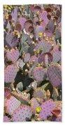 Purple Prickly Pear 3 Beach Towel
