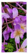 Purple Rain Lilies Beach Towel