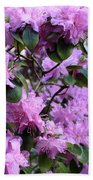 Purple Rhododendrons Beach Towel