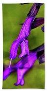 Purple Salvia 002 Beach Towel