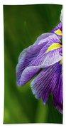 Purple Siberian Iris Flower Closeup Beach Sheet