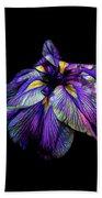 Purple Siberian Iris Flower Neon Abstract Beach Sheet