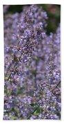 Purple Spikes Flora Impression 6.8.17  Beach Towel