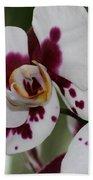 Purple Splash Orchid 3 Beach Towel