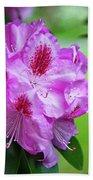 Purple Spring 15 Beach Towel