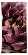 Purple Succulent Beach Towel