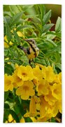 Purple Sunbird Beach Towel
